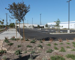 This is a view of the corner of the lot with the permeable concrete (light gray) and the bio swale both of which are part of the stormwater retention system.